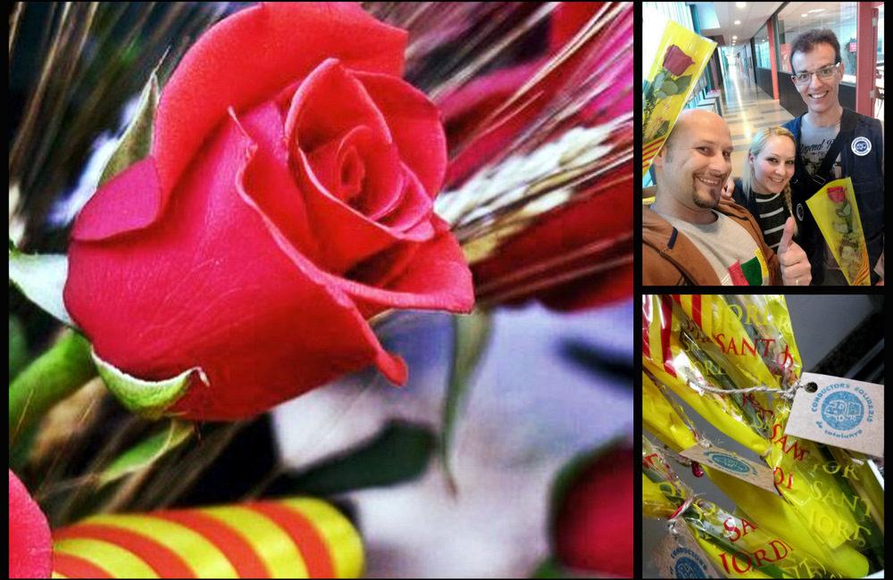 CSC os desea ¡Feliz día de Sant Jordi!